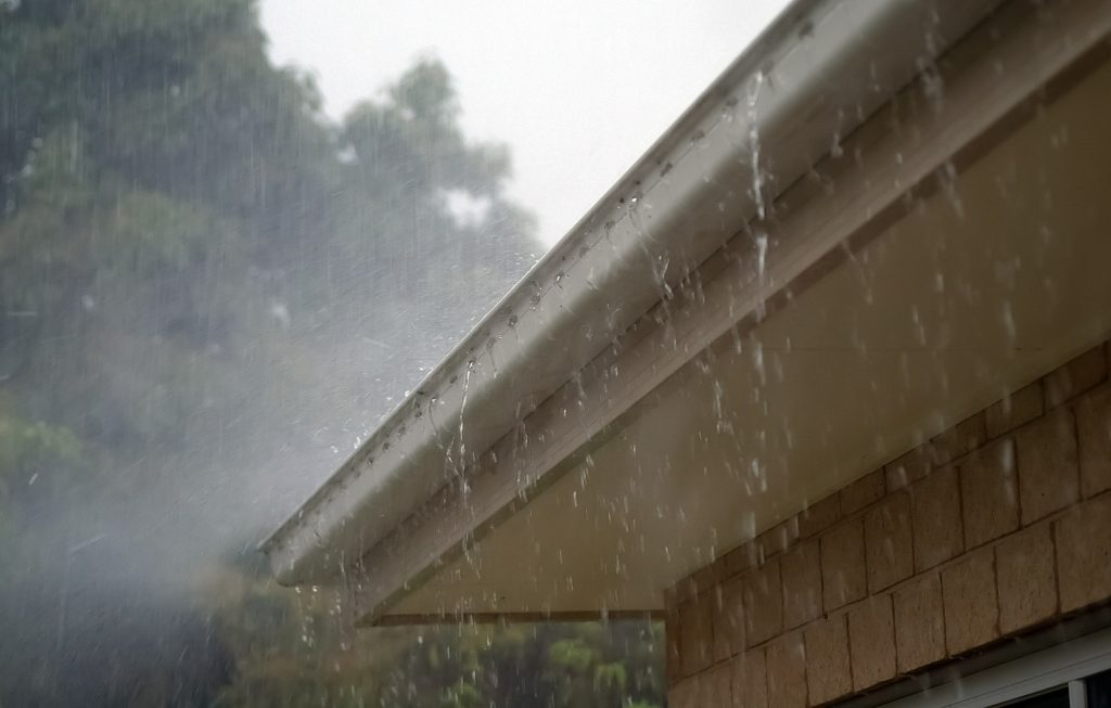 The Impact of Moisture on a Home's Roof